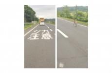 鹿とラチェットドライバー~道東に旅~