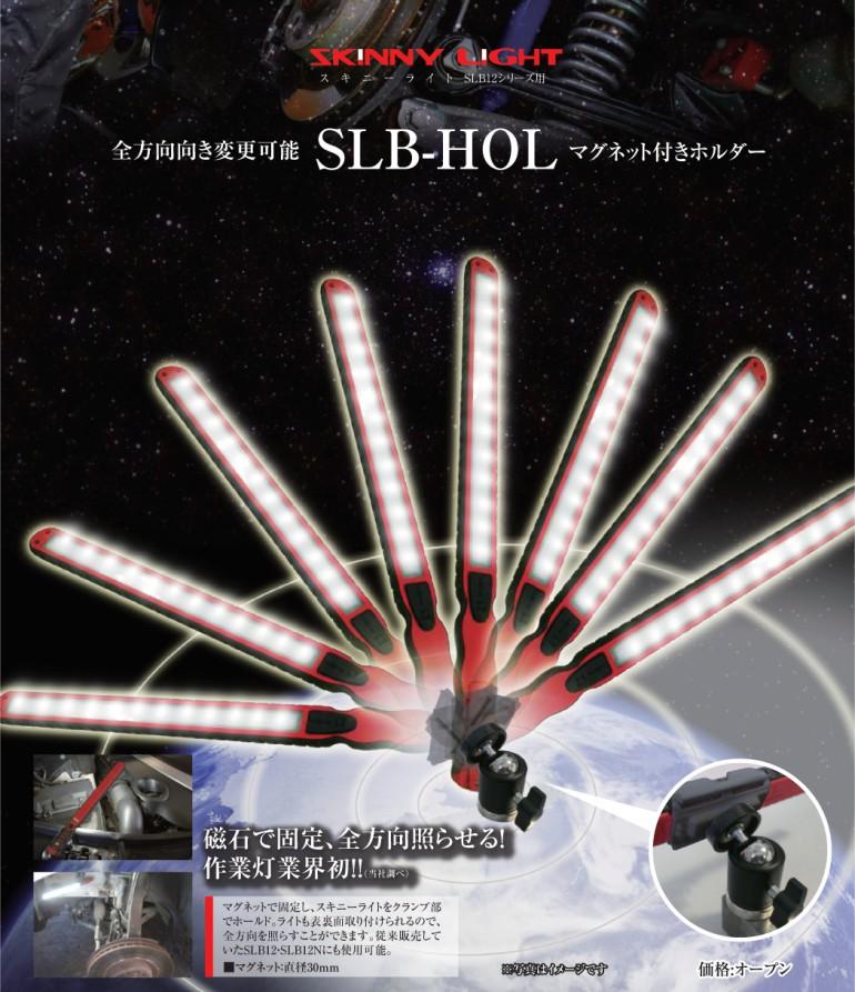 SLB-HOL_panflet_0303
