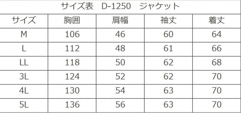 D-1250SIZE