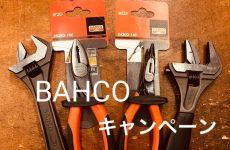 【柏店限定!】BAHCOキャンペーン