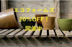 札幌店限定!エコフォームズ20%OFF!