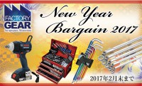 NEW YEAR BARGAIN 2017 !!
