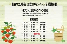 東京ウエスト店、お盆は通常営業です。